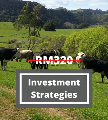 Successful Investment Strategies and The Evolving Financial and Capital Markets