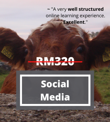 The New Social Media Driven Business Model And Its Implication To The Capital Market