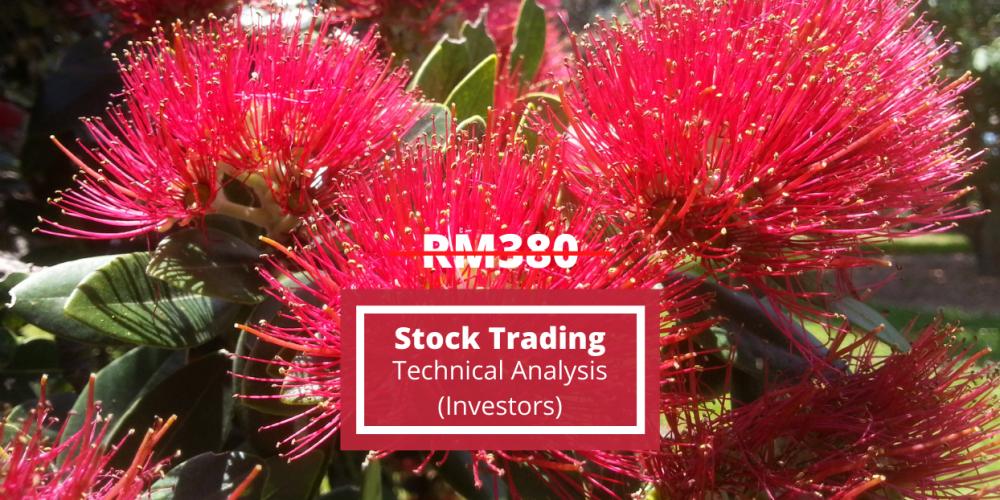 Stock Trading – Investors