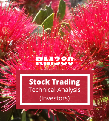 Stock Trading Strategy – Technical Analysis for Investors