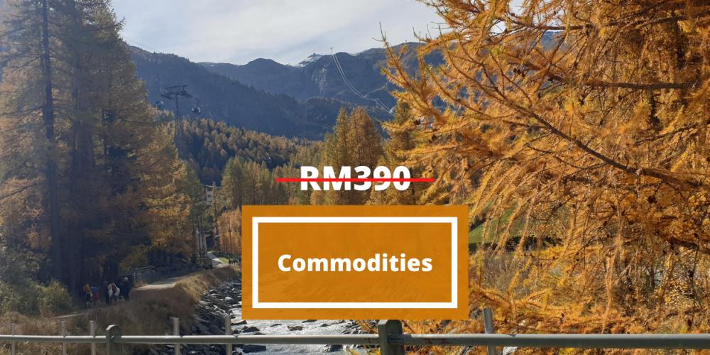 Commodities (19102020)