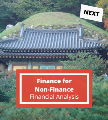 Finance for Non-Finance Professionals – Capital Structure and Financial Analysis