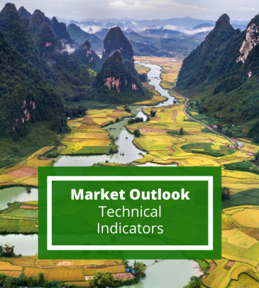 Market Outlook Using Technical Indicators