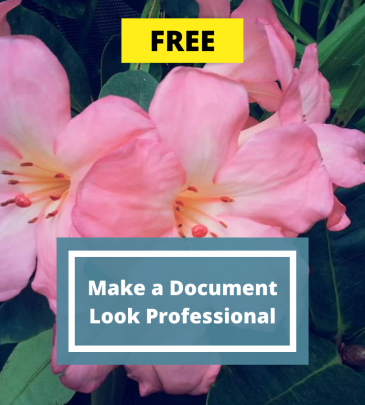 How to Make A Document Look Professional
